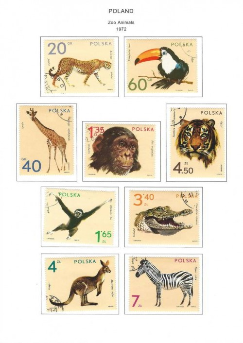 steiner-stamp-album-pages-poland-1980-pg-17-1972-zoo-animals.jpg