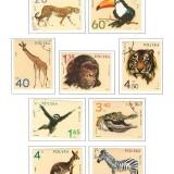 steiner-stamp-album-pages-poland-1980-pg-17-1972-zoo-animals
