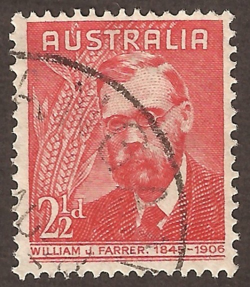 Australia-213u.jpg