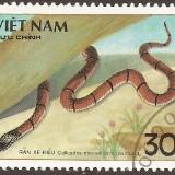 Vietnam-stamp-1976u