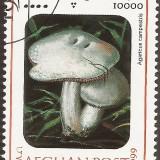 Afghanistan-Stamp-0006u