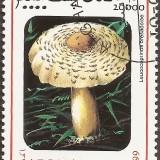 Afghanistan-Stamp-0007u
