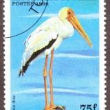 Chad-stamp-775u