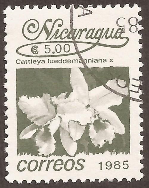 Nicaragua-stamps-1517u.jpg