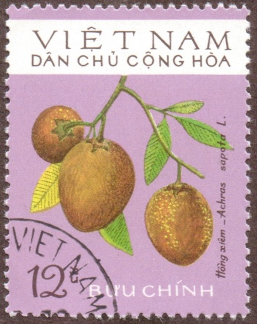 Vietnam-stamp-768u-North.jpg