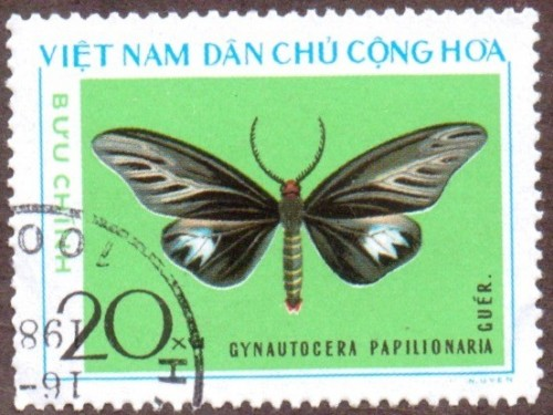Vietnam-stamp-800u-North.jpg