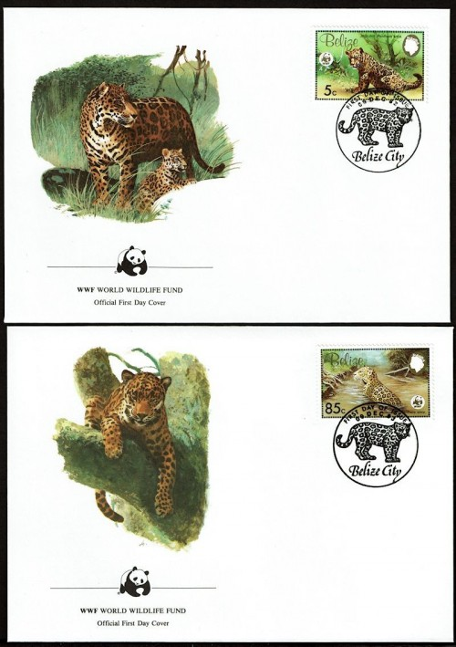 Leopards-FDC-2.jpg