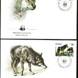 Wolves-FDC-2