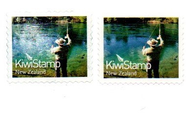 new-zealand-kiwi.jpg