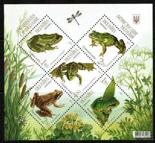 Ukraine-906-Frogs-Toads-2012.jpg