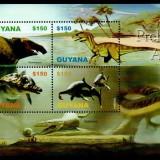 guyana44
