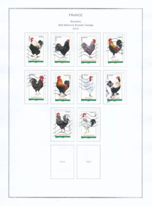 Roosters-2016.jpg