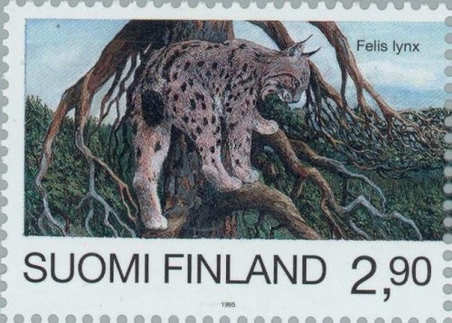 Eurasian-Lynx-Lynx-lynx-1.jpg