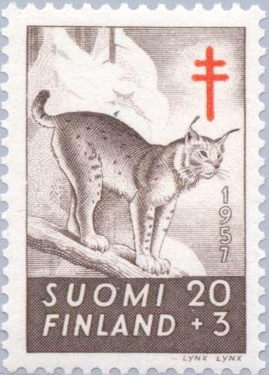 Eurasian-Lynx-Lynx-lynx-2.jpg