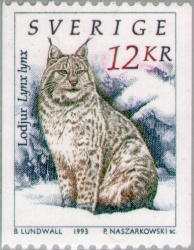 Eurasian-Lynx-Lynx-lynx.jpg