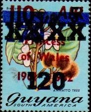 guyana1292.jpg