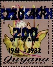 guyana1293.jpg