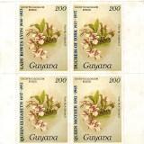 guyana1539