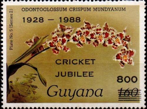 guyana2475.jpg