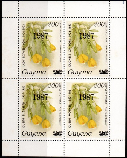 guyana2106.jpg