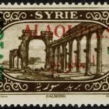 Alaouites-Scott-C5