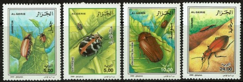 Algeria-1194-97-2000-Insects.jpg