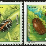 Algeria-1194-97-2000-Insects
