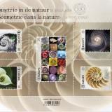 Geometrics-in-Nature-1--Spirals