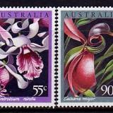 Aus-Orchids
