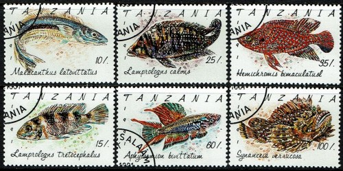 Tanzania-Fish.jpg