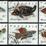 Tanzania-Fish