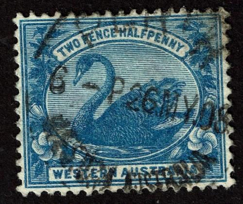 WAust-75-1901.jpg