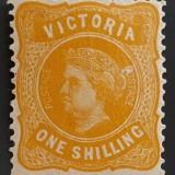 victoria-203-1901