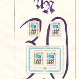 Kilham-UN-NY-30th-Anniversary