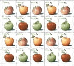 Apples-Pane20-PRODUCT.jpg