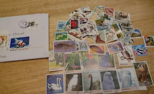stampclub2.jpg
