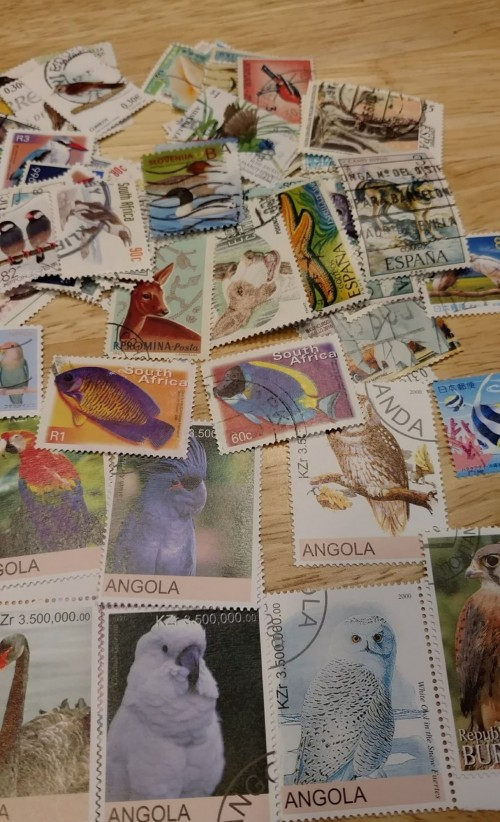 stampclub3.jpg
