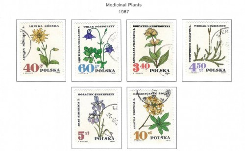 medicinal-plants-1967-poland-stamps.jpg