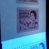 Canada454i454454biicompare