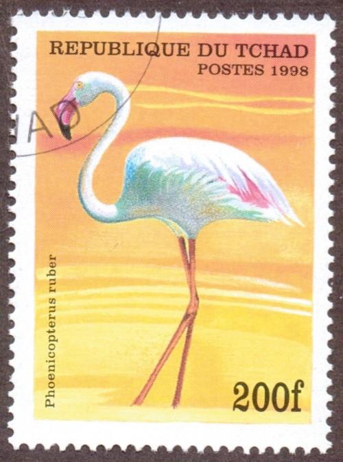 Chad-stamp-777u.jpg