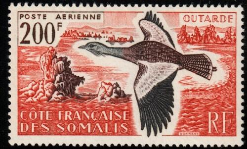 somalicoast-1960-bustard.jpg