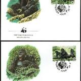 Gorilla-FDC-1