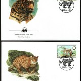 Leopards-FDC-1