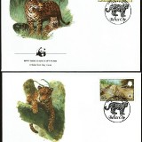 Leopards-FDC-2
