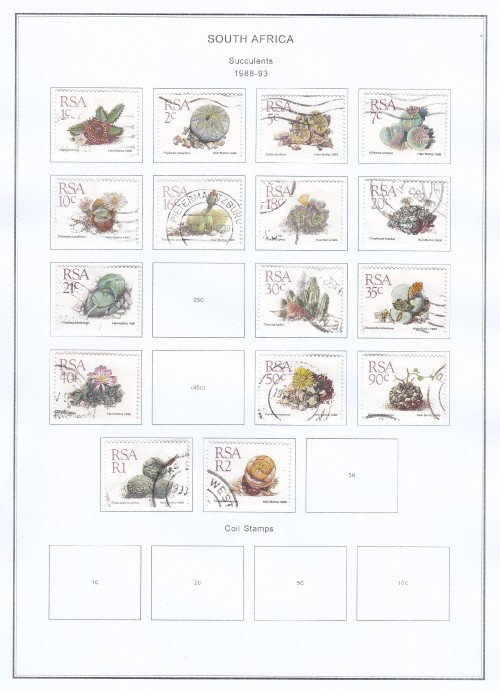 South-Africa-Succulents-1988-93.jpg