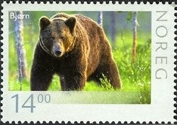 Brown-Bear-Ursus-arctos.jpg