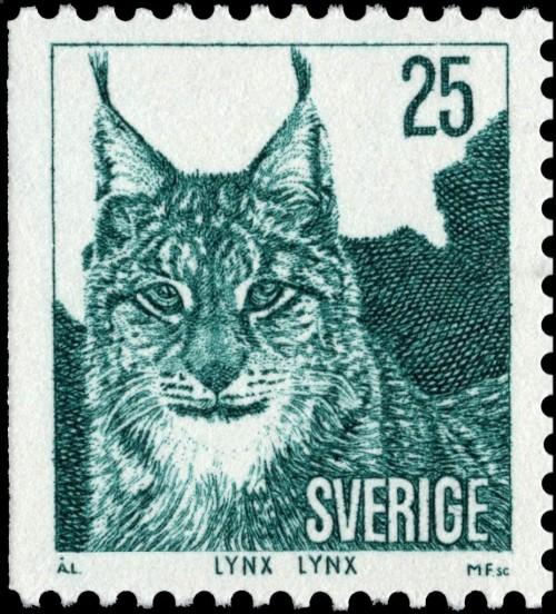 Eurasian-lynx---Lynx-lynx.jpg