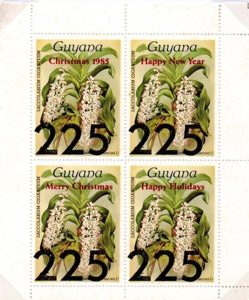 guyana2232.jpg