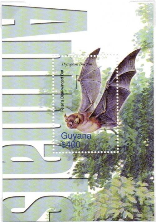 guyana6428.jpg