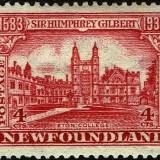 Newfoundland-215